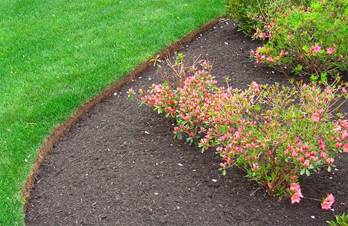 Lawn edging for Landscape edging