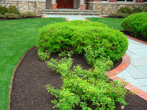 how to make a garden bed in lawn