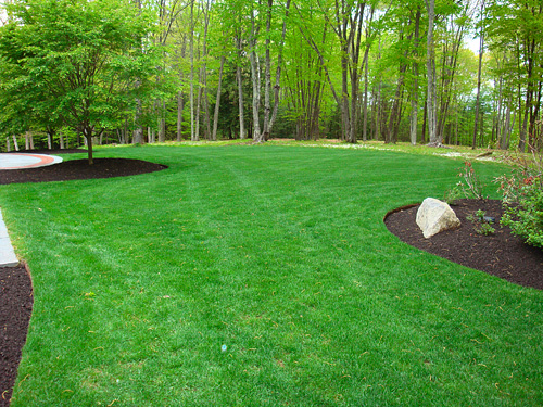 Lawn maintenance and mowing